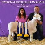 0548 - Teafatiller - Buyer - Twin County Dorpers Grand Champion White Dorper Ram - Lot #188 - National Show & Sale - Duncan Ok - DJS Copyright 15